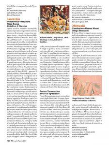 TicinoManagement_072016